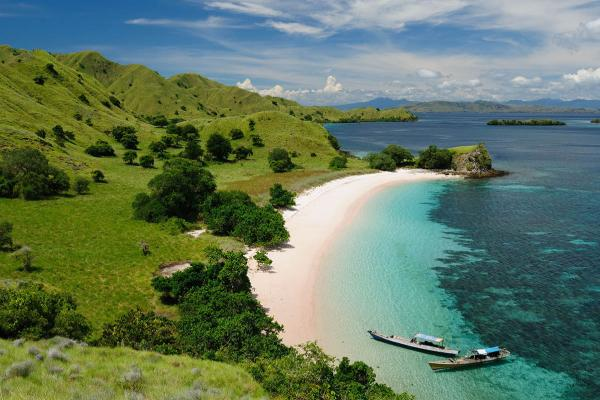 Komodo photo