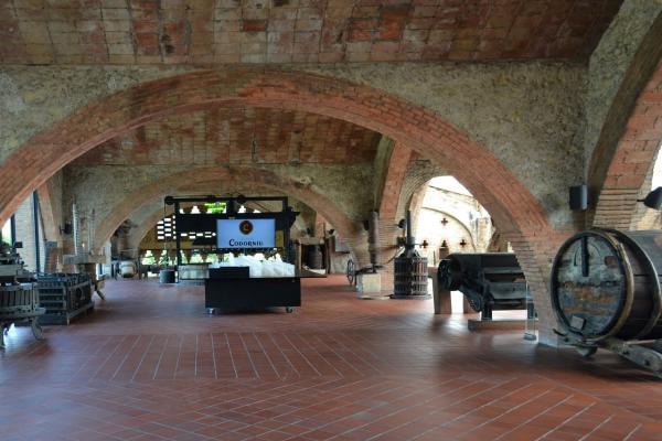 Завод производства испанского игристого вина Codorniu фото