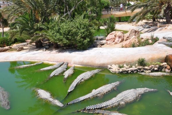 Park Djerba Explore photo