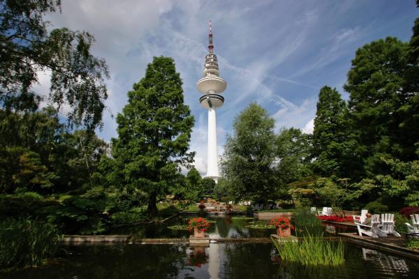 Ботанический сад фото