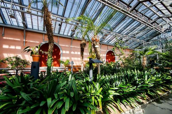 Winter garden photo