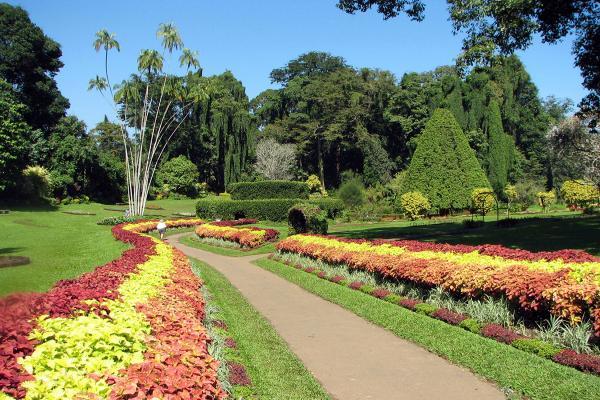 Chinamon Gardens Gardens in Colombo photo