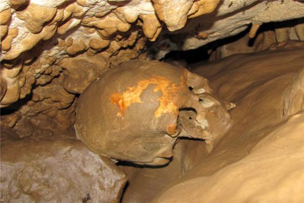 Cat's cave photo