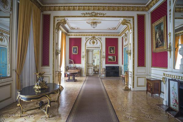 Palace of Counts Potocki photo