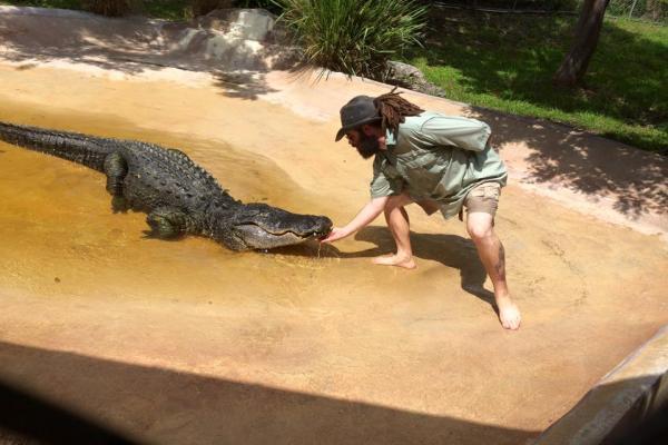Парк с аллигаторами Sawgrass Recreation Park фото