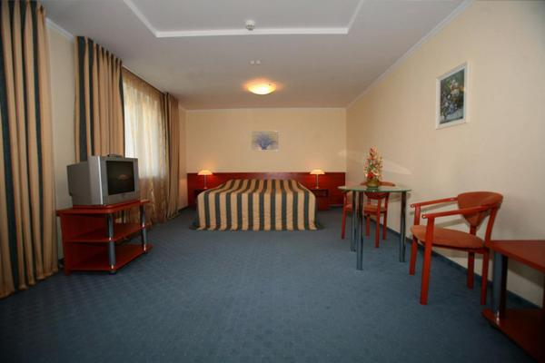 Hotel Sputnik photo