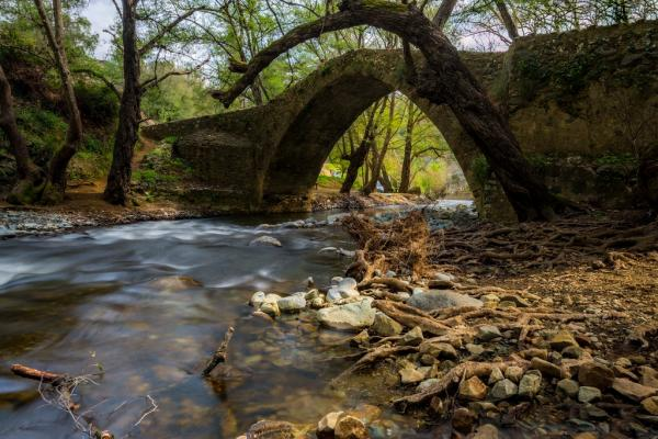 Venetian bridge photo