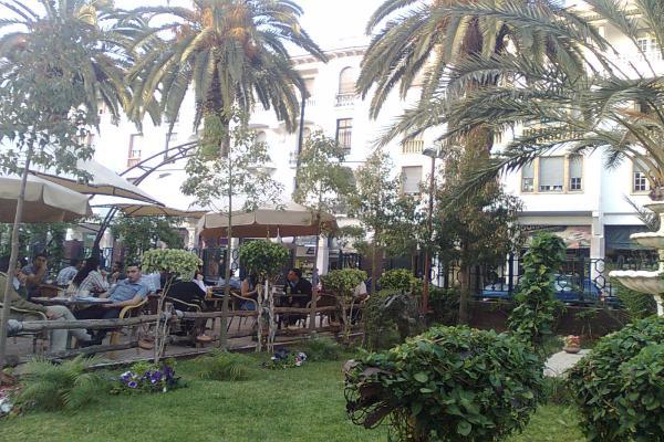 Cafétéria 7eme Art Photo