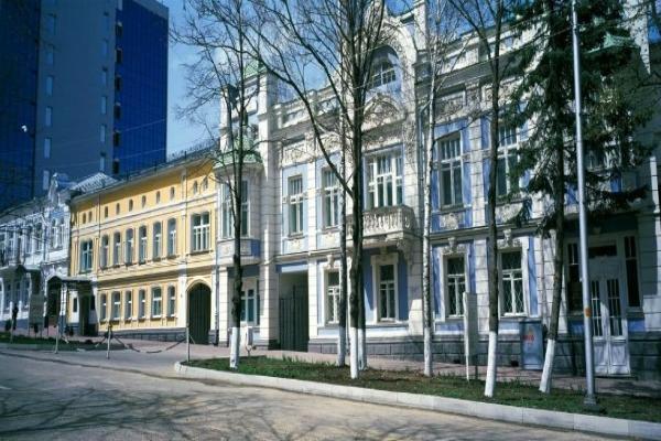 Stavropol Regional Museum of Fine Arts photo