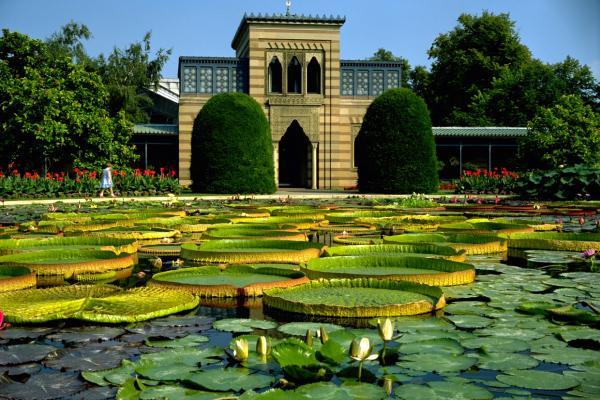 Ботанический сад Вильгельма фото