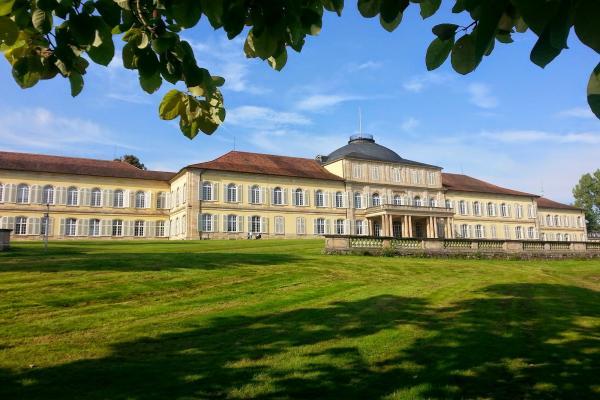 Гогенгеймский дворец фото
