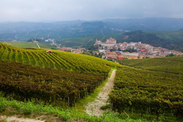 Barolo photo