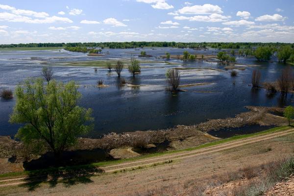 """Foto del parque natural """"Llanura aluvial Volgo-Akhtubinskaya"""""""