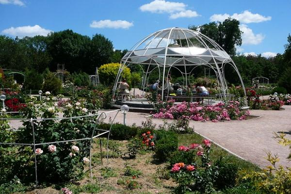 Botanical Garden (Salgirka Park) photo