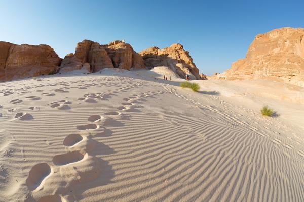 Синайская пустыня фото