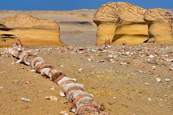 Wadi al-Khitan photo