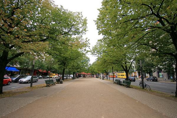 Unter den Linden Boulevard photo