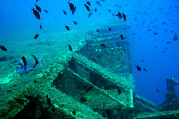 Sunken ferry MS Zenobia photo