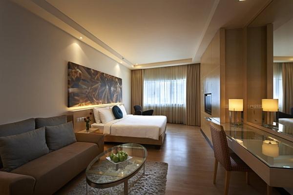 Hotel Ansa photo