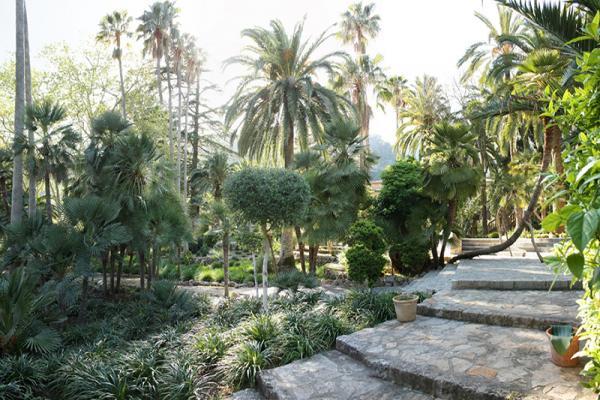Сады Альфабия фото