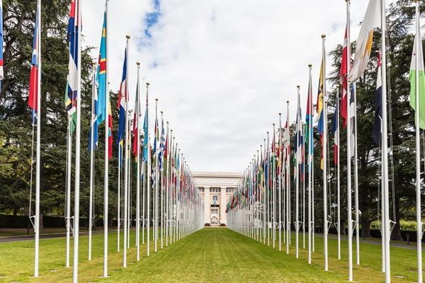 Дворец ООН фото