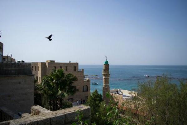 Мечеть Аль-Бахр фото