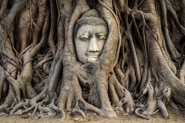 Foto de Ayutthaya