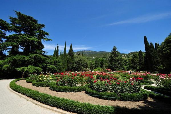 Nikitsky Botanical Garden photo